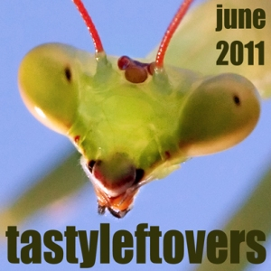 Indie 69 June 2011 Tasty Leftovers cover art